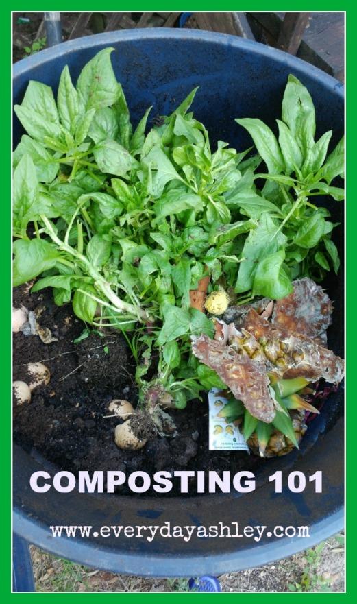 composting 101 pin